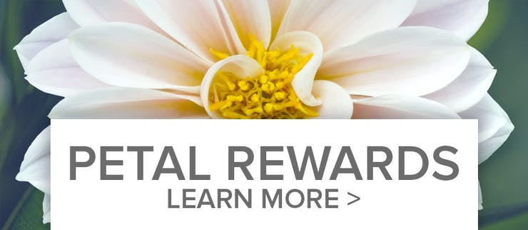 Petal Reward Points