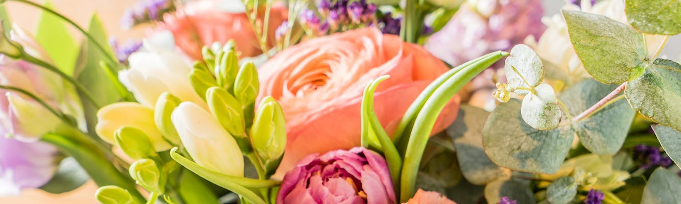 24f9ab174e21 Sarasota Same-Day Flower Delivery by Beneva Flowers