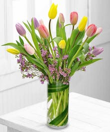 Capture the essence of spring with tulips, the most popular flower.