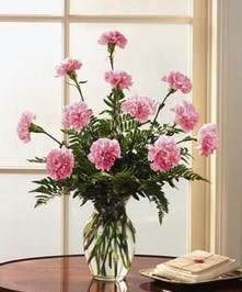 One dozen carnations in the color of your choice is the perfect selection for any occasion!