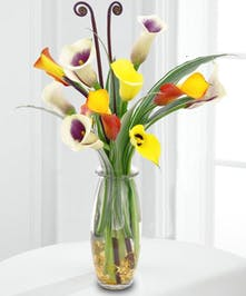 Delightful mix of calla lilies in a vase