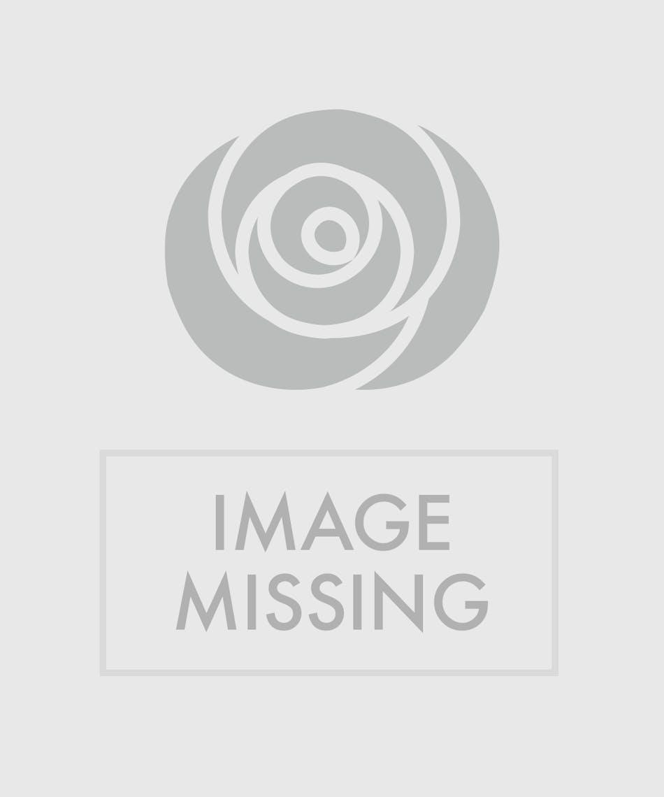 Birds In Paradise Floral Arrangements Beneva Flowers Gifts