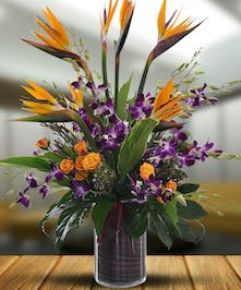 Beautiful dendrobium orchids and majestic birds of paradise
