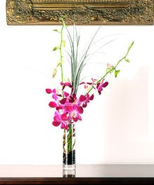 Show your appreciation with this unique bud vase of Dendrobium Orchids!
