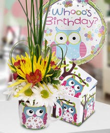 A wise owl told us that someone is having a birthday - do you know whooo?
