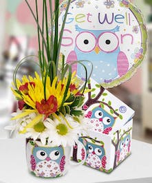 """Brighten someone's day with this adorable owl-themed """"get well soon"""" gift set."""