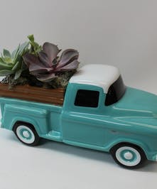 Classic Chevy With Succulents