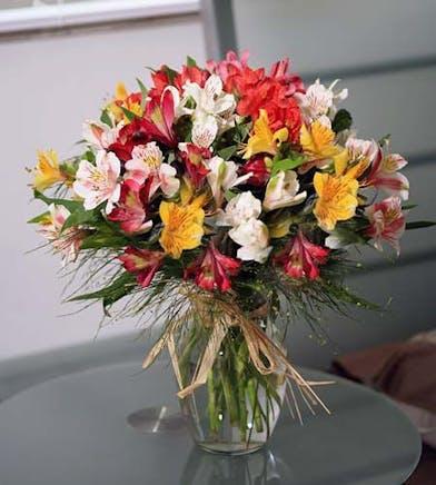 Also known as alstromeria lilies