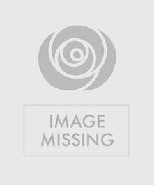 This contemporary design features beautiful dendrobium orchids brimming from a rectangular vase