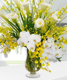 A tall and full premium arrangement of white call lilies, white and yellow varieties.
