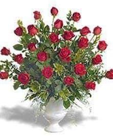 Featuring two dozen long stem Ecuadorian roses