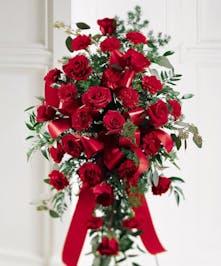 An elegant design of red roses & carnations