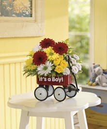 Roll out the welcome wagon from Beneva Flowers for the new baby boy!