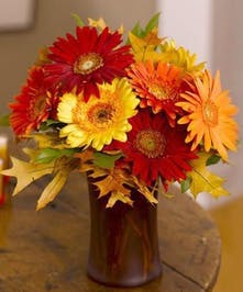 A sunset inspired fall design of Gerbera Daisies