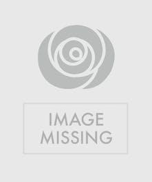 Celebrate Graduation!