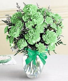 Make sure their day is a lucky one, by sending a bouquet of lucky green carnations!