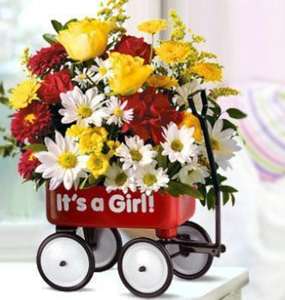 A Baby Girl\'s First Wagon Bouquet (Girl) - New Baby Flowers - Beneva ...