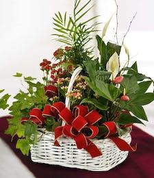 Holiday Garden Basket