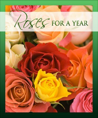 Roses for a Year