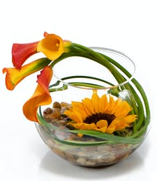 Striking Sunflower Bowl