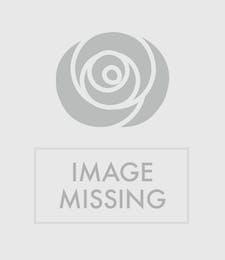 x-Dom Perignon Champagne