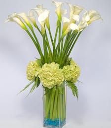 Luxe Calla Lilies