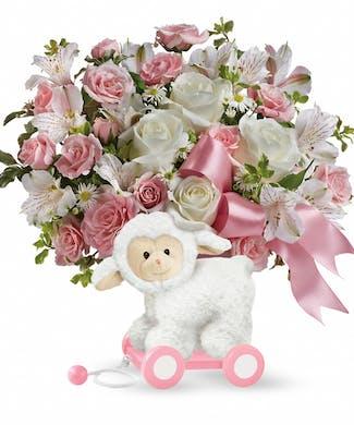 Sweet Little Lamb (Baby Girl)