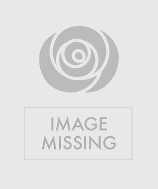 Spray Rose Wristlet