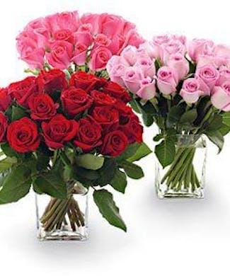 20 Roses